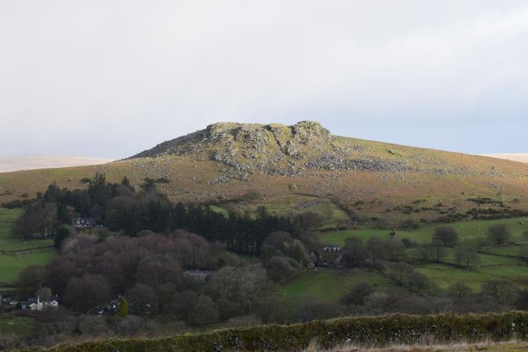 DSC_0596 sheeptor mount jeg