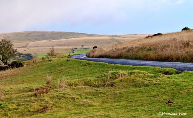 DSC_0605 sheepstor road 2