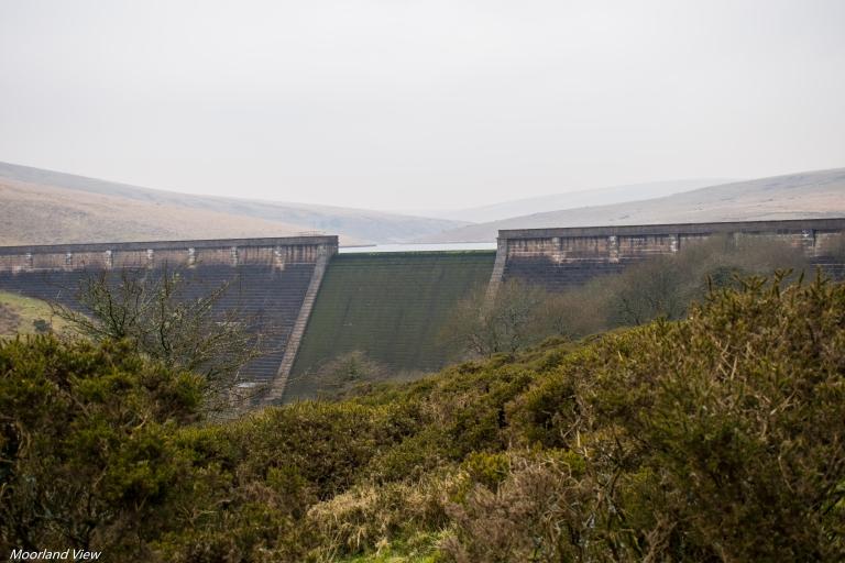 Avon Dam main