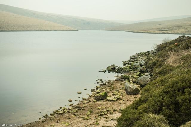 Avon Dam pond