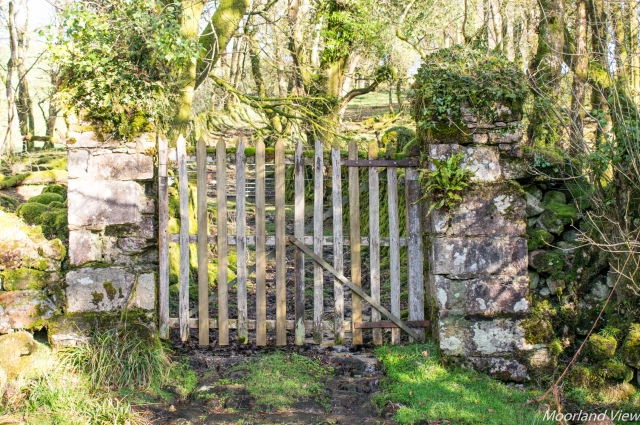 Owley farm gate 2