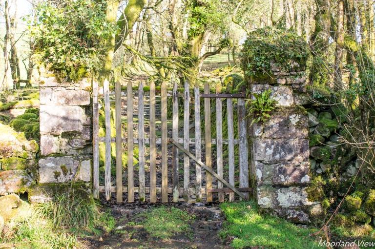 Owley farm gate 2