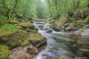erme river 1 (1 of 1)