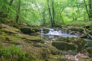 erme river 2 (1 of 1)