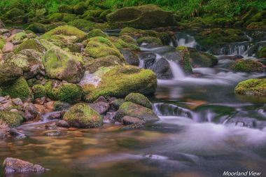 erme river 5 (1 of 1)