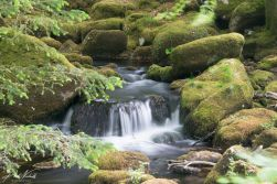 River Meavy 2