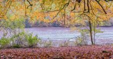 River-3185