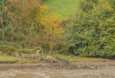River wall-3187