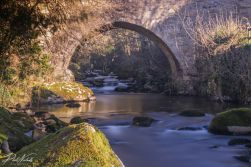 erme bridge_