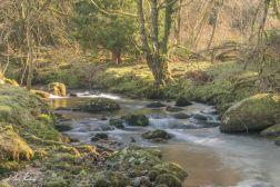 River Meavy into Burrator Revservoir